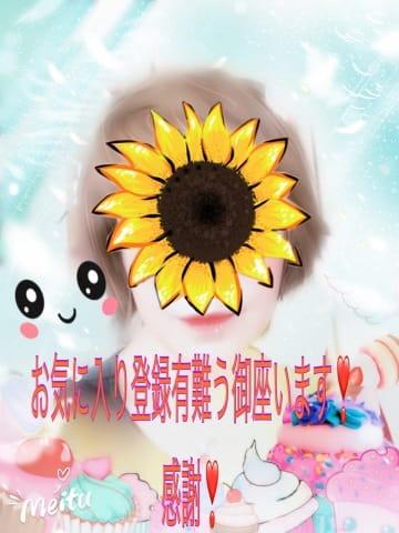「お気に入り登録有難う御座いました!!?」04/23(04/23) 21:20 | 沢田ありなの写メ・風俗動画