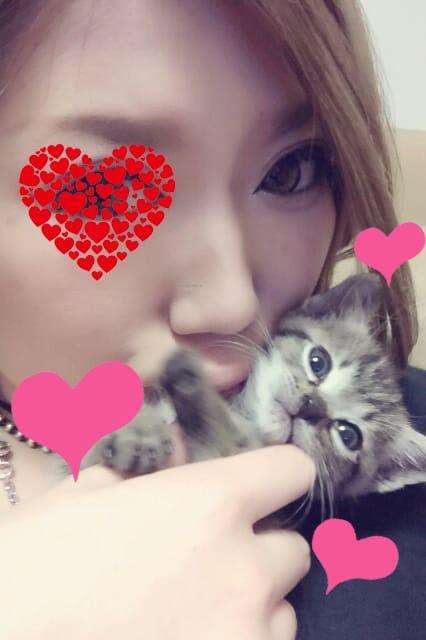 「グランドアークのおにいさん♡」04/24(04/24) 06:42   しぇりーの写メ・風俗動画