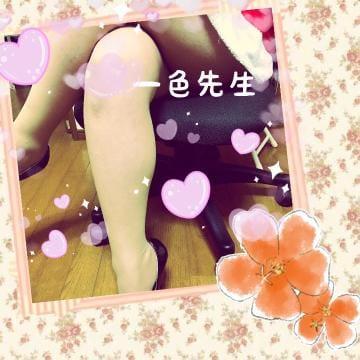 「[今、ちょっとエッチな気分なんです・・・]:フォトギャラリー」04/24(04/24) 19:03   一色先生の写メ・風俗動画