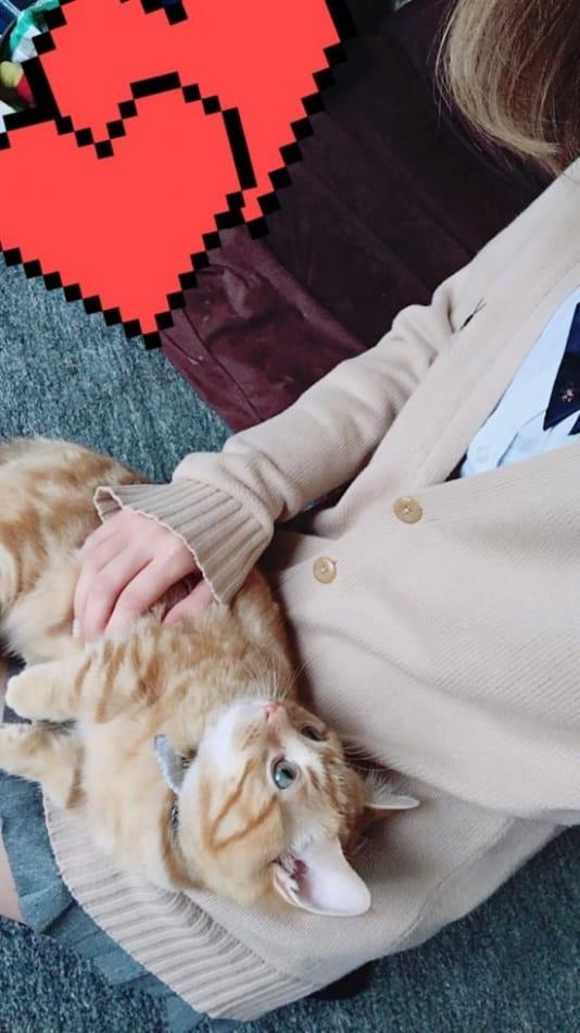 「恋に落ちました…」05/10(05/10) 12:37 | 体験 あいりの写メ・風俗動画