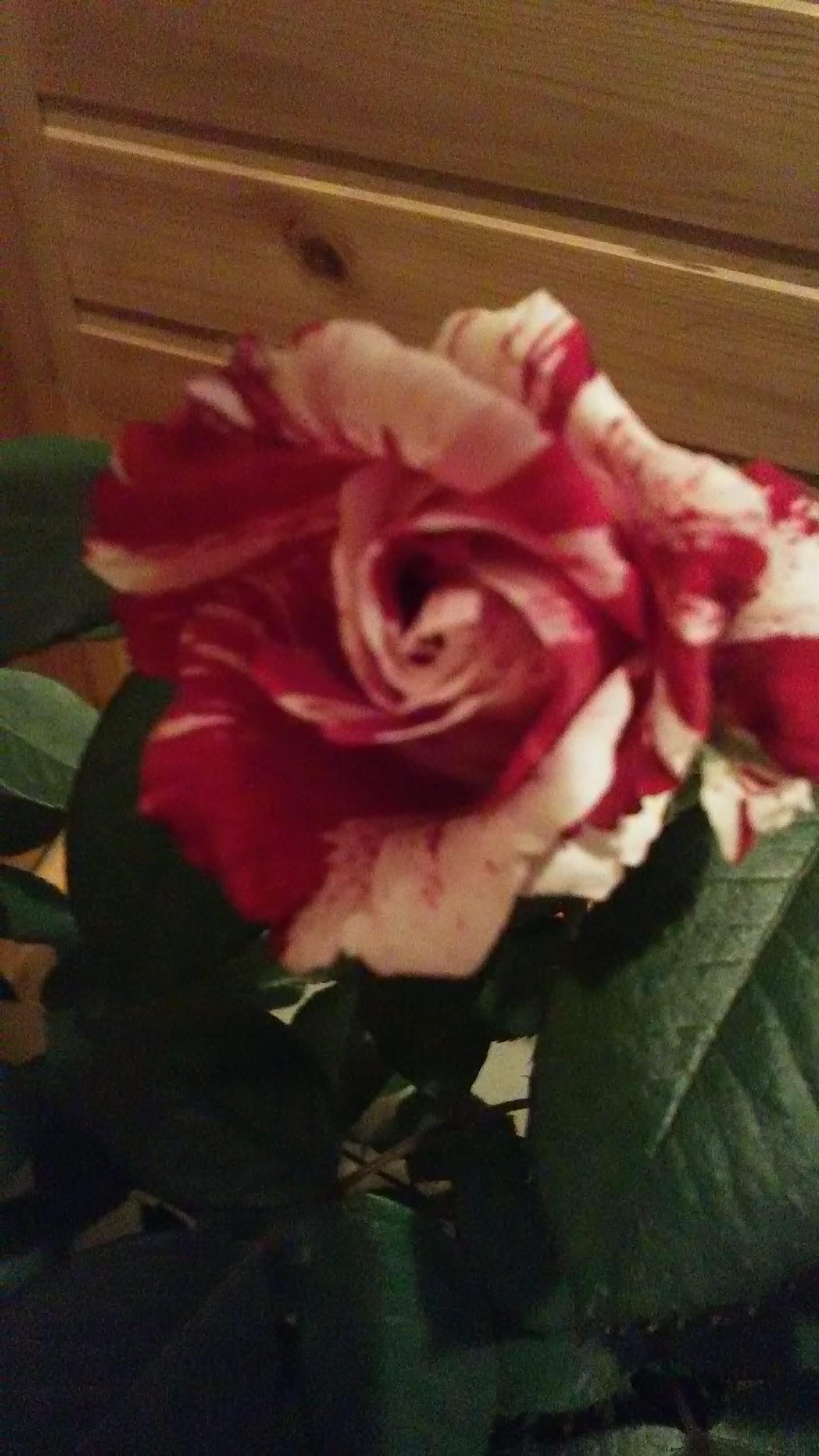 「こんにちは。」05/13(05/13) 14:34 | まゆこ上品奥様の写メ・風俗動画