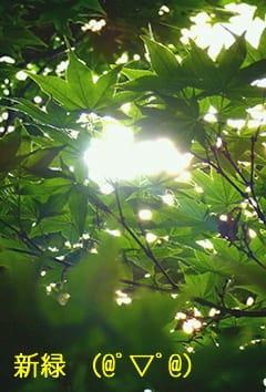 「おはようございます(?)」05/14(05/14) 11:48 | 滝本真奈美の写メ・風俗動画