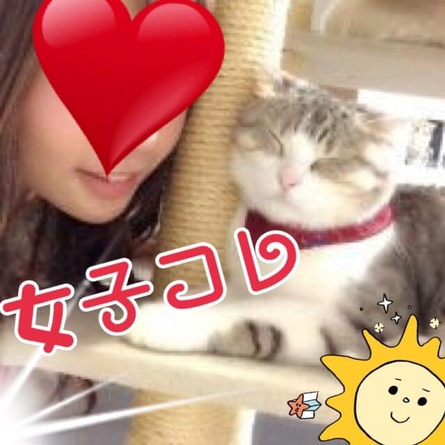 「ネコカフェ」05/15(05/15) 02:54 | みなみの写メ・風俗動画