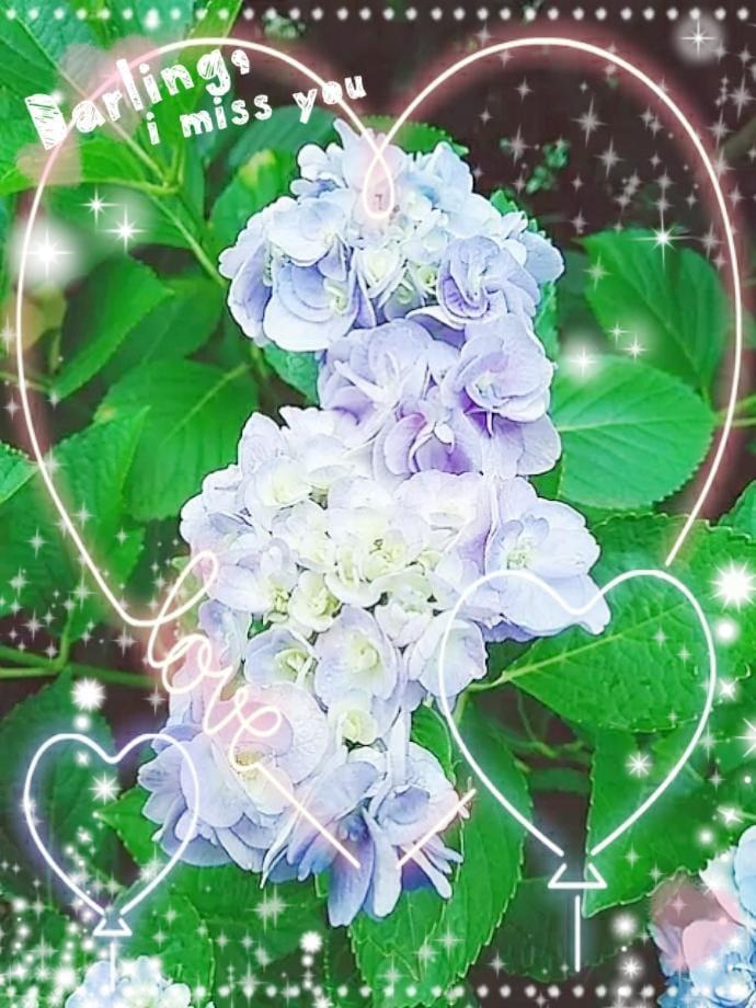 「♪5月27日 日曜日♪」05/27(05/27) 05:40 | 浅水麻弥の写メ・風俗動画