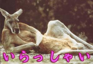 「お礼ブログです(*^^*)」06/17(06/17) 16:01 | みあきの写メ・風俗動画