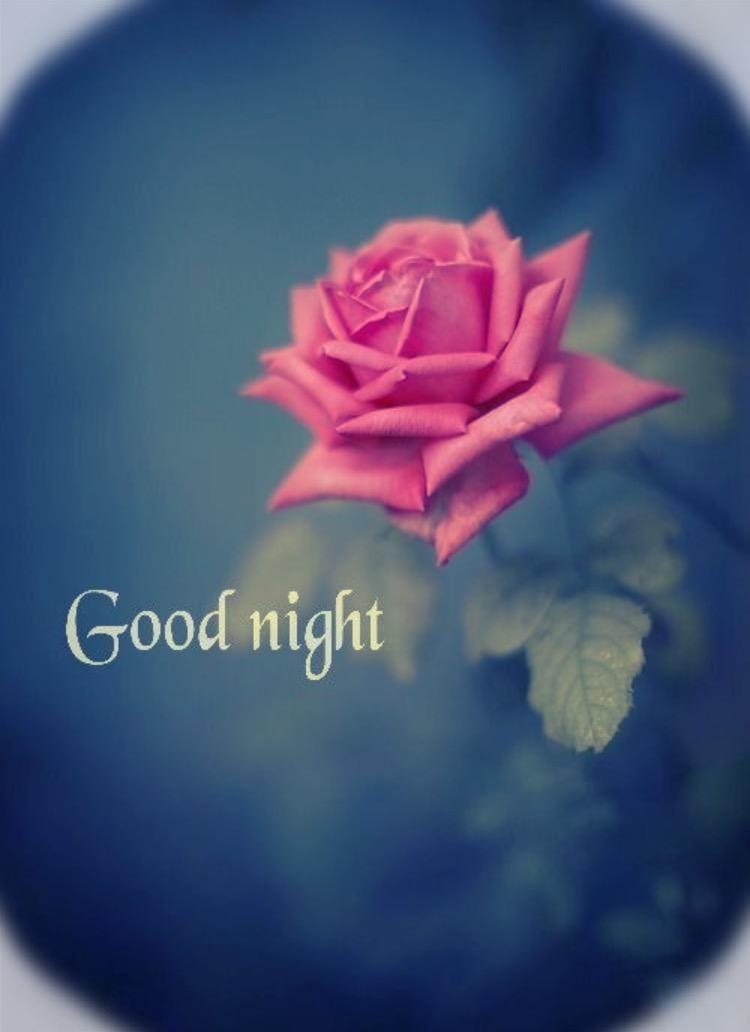 「おやすみー!」06/20(06/20) 05:34 | ゆなの写メ・風俗動画