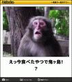 ひびき|即アポマダム~名古屋店~