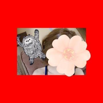 「こんばんわ??」06/29(06/29) 22:43   しおんの写メ・風俗動画