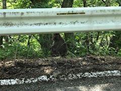 「るな」07/03(07/03) 12:39 | るなの写メ・風俗動画