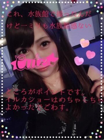 「たなばた☆」07/07(07/07) 11:13 | MAYUの写メ・風俗動画