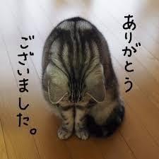 「出勤しました♪」07/21(07/21) 13:13 | さゆりの写メ・風俗動画