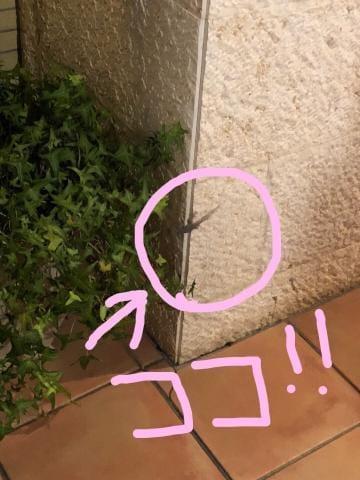 「みてみて!!」07/23(07/23) 03:16 | りなの写メ・風俗動画