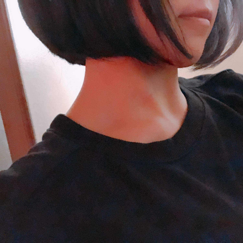 「蝉」08/04(08/04) 20:18 | ささみの写メ・風俗動画