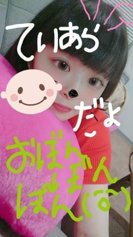 「てぃあらだよう、」08/11(08/11) 00:56   てぃあら☆長野一神可愛い18歳☆の写メ・風俗動画