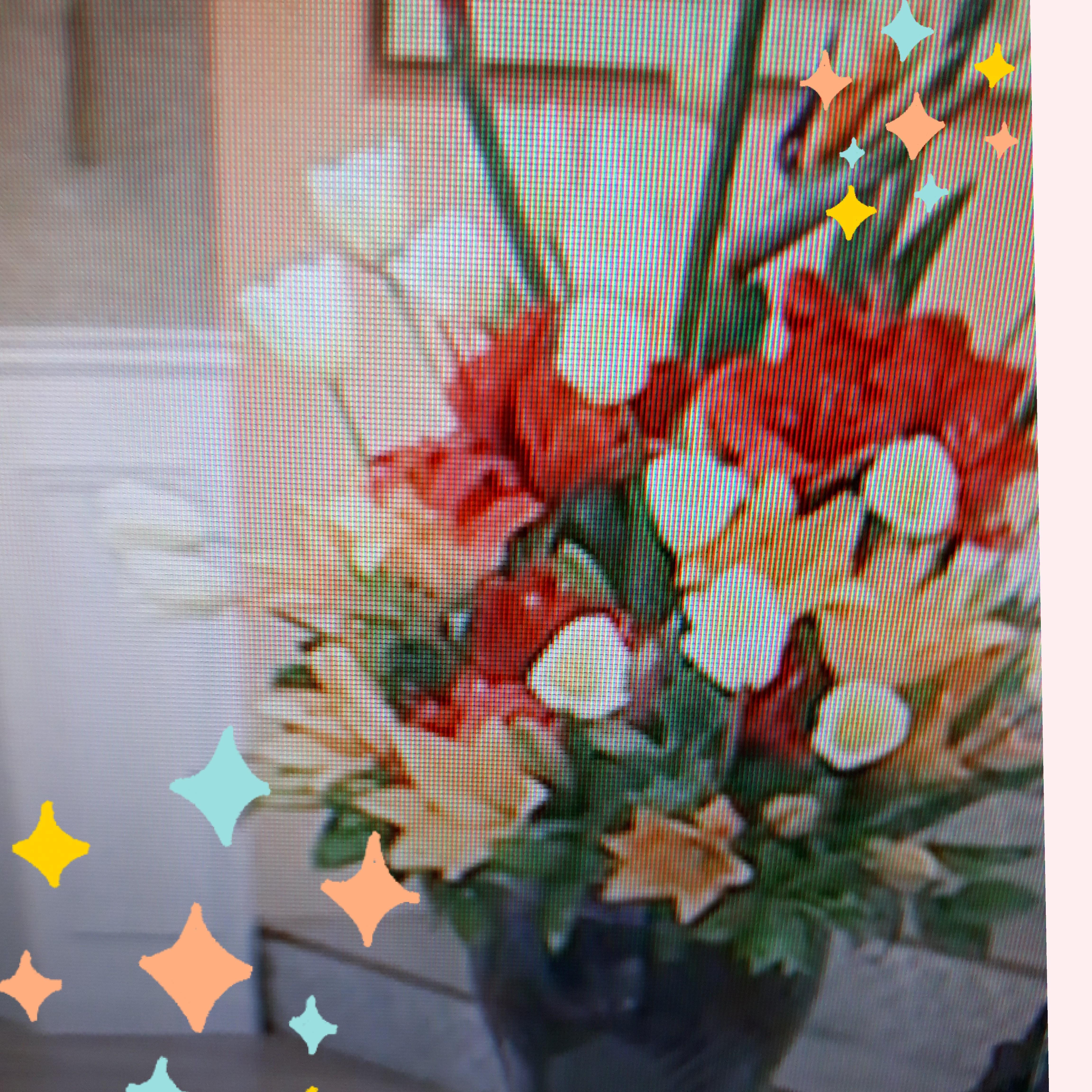 「今日も厳しい暑さで~す」08/14(08/14) 13:19   鈴木の写メ・風俗動画
