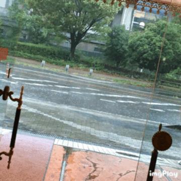 「任命します(*ノωノ)」09/04(09/04) 15:44   ラブの写メ・風俗動画