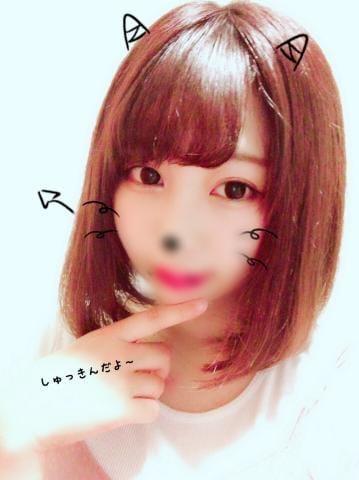 「出勤なう(`・ω・)」09/14(09/14) 17:11   ひびき 期待度200%美少女の写メ・風俗動画