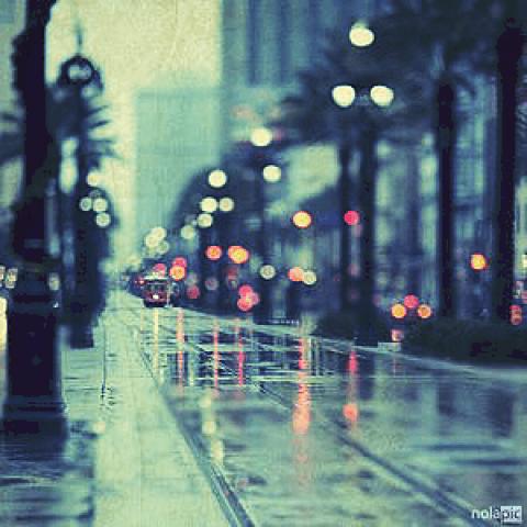 「秋雨」09/20(09/20) 12:34 | 直島留美の写メ・風俗動画
