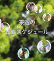 ひびき|大阪ぽっちゃりマニア 十三店