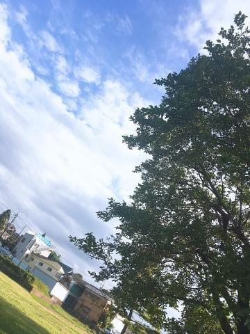 「雨女の貴重な晴れの日」09/23(09/23) 23:57 | まなの写メ・風俗動画