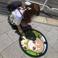 南/Minami★癒しの妖精♪ ロマネ