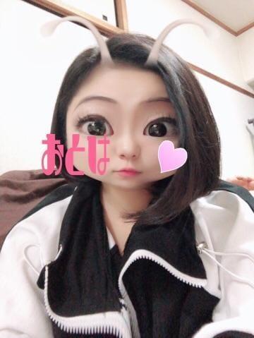 「[エロより笑い!オモシロ写メ公開!]:フォトギャラリー」10/04(10/04) 22:47 | おとは☆Gカップ爆乳美少女☆の写メ・風俗動画