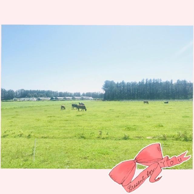 「( ¨? )」10/06(10/06) 19:55   つばさの写メ・風俗動画