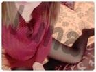 「白山グランドのお兄様★」02/04(02/04) 17:05 | るなの写メ・風俗動画