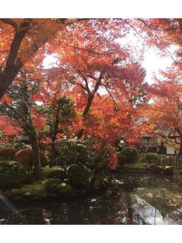 「秋の京都」10/14(10/14) 20:17 | レイラの写メ・風俗動画