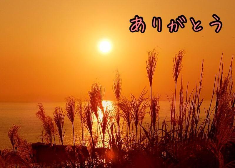 「14日のありがとう」10/14(10/14) 20:57 | 霧島 ひかるの写メ・風俗動画