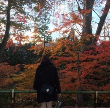 「ぽぽぽぽん」10/18(10/18) 01:37 | 紫苑/しおんの写メ・風俗動画