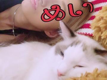 「だいっきらい」10/19(10/19) 00:34 | めいの写メ・風俗動画