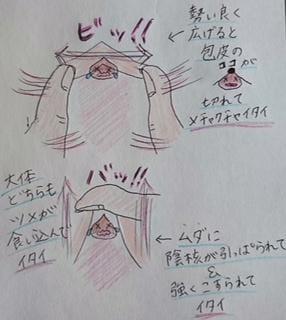 「お兄さん達絶対見て」10/27(10/27) 19:34 | らんの写メ・風俗動画