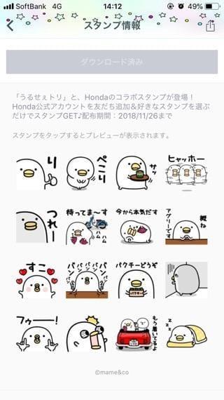 「あやか」11/04(11/04) 14:29 | あやかの写メ・風俗動画