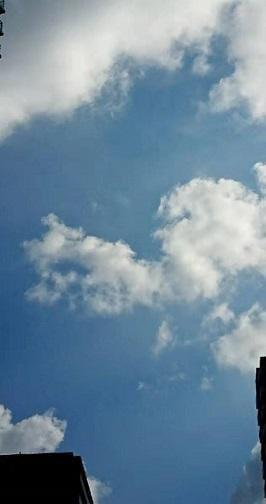 「見て見て~♡」11/08(11/08) 18:20   すみれの写メ・風俗動画