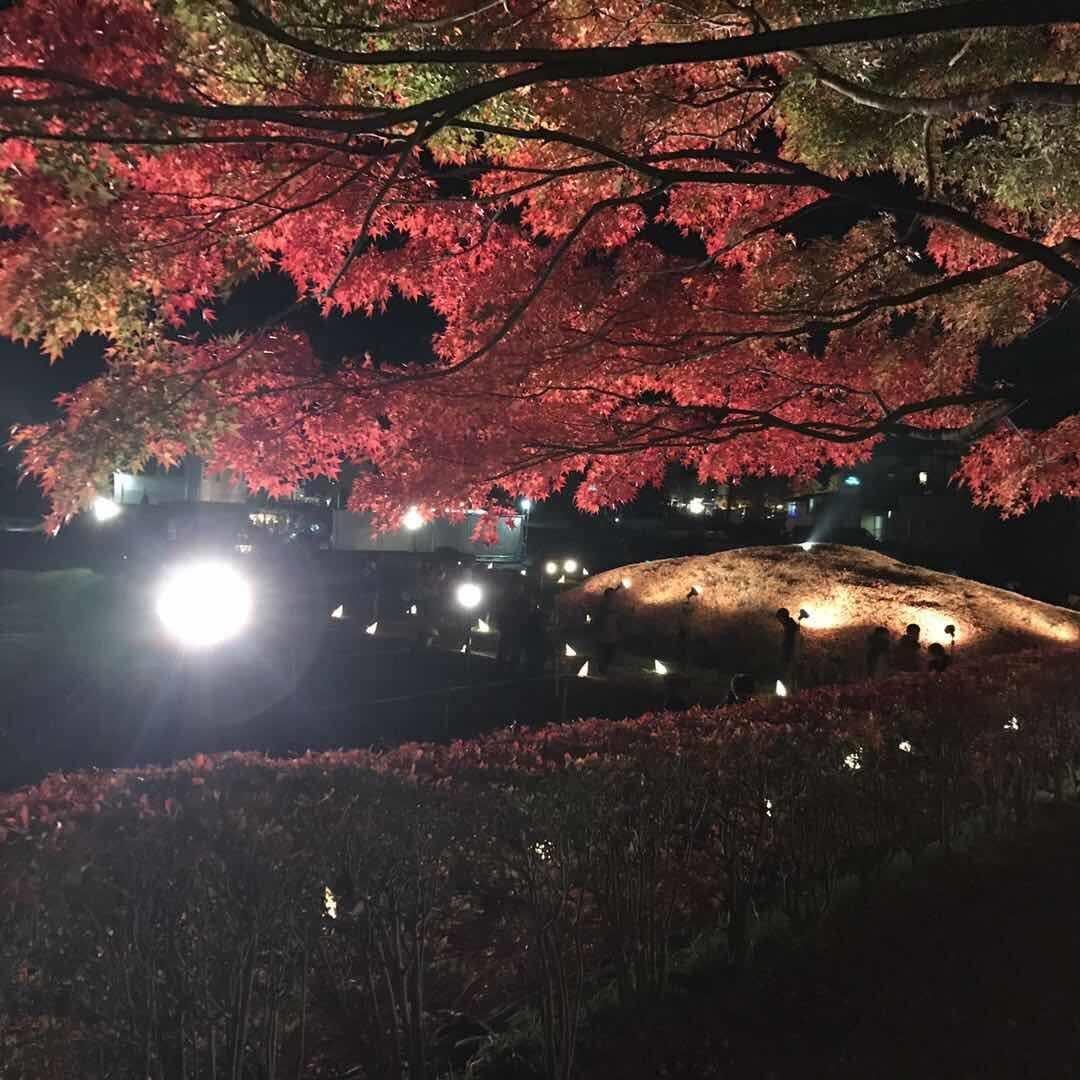 「大宮のUさま♪」11/11(11/11) 05:56 | あきの写メ・風俗動画