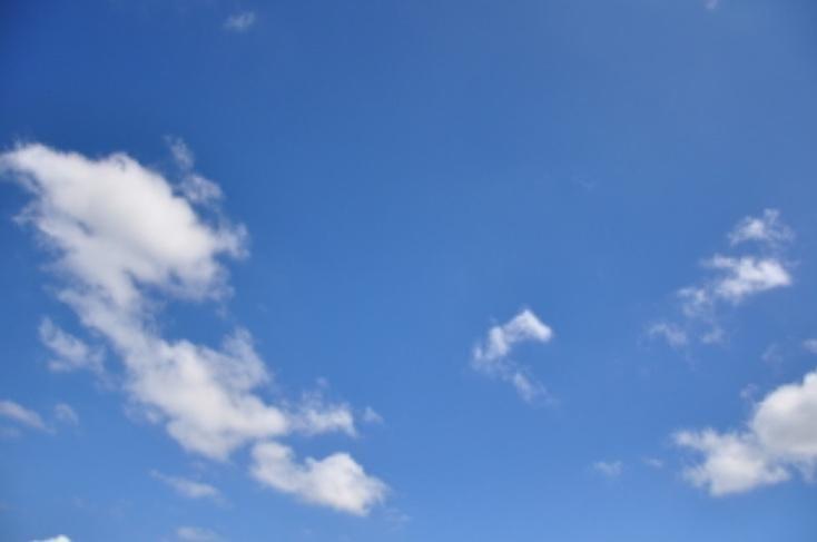 「おはようございます」11/11(11/11) 09:09 | 美加の写メ・風俗動画