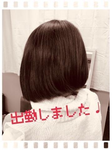 「出勤いたしました☆」11/12(11/12) 12:08   谷川歩奈実の写メ・風俗動画