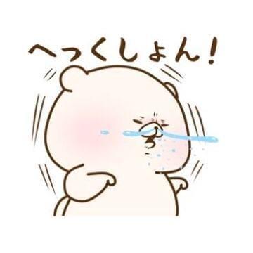 「ごめんなさい泣」11/14(11/14) 09:17 | ちひろの写メ・風俗動画