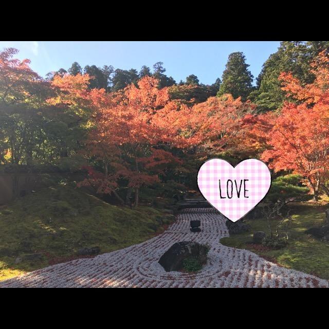 「紅葉」11/14(11/14) 18:24 | ここねの写メ・風俗動画