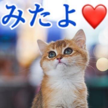 「15日みたよ??」11/16(11/16) 01:01 | 渡辺ららの写メ・風俗動画