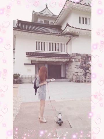「街が」11/16(11/16) 01:29 | ココノの写メ・風俗動画