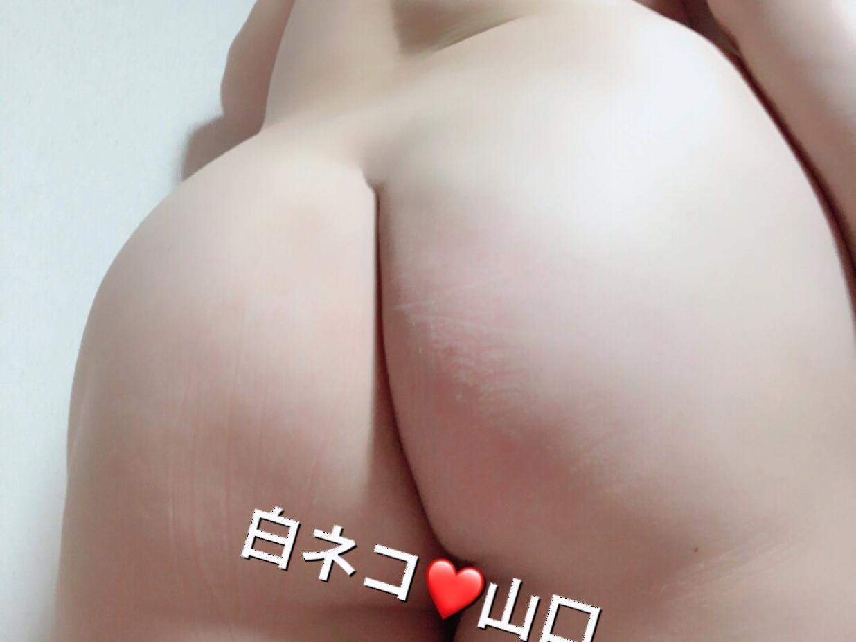 「☆お久しぶりです(^ ー^)♪☆」11/16(11/16) 12:07   山口の写メ・風俗動画