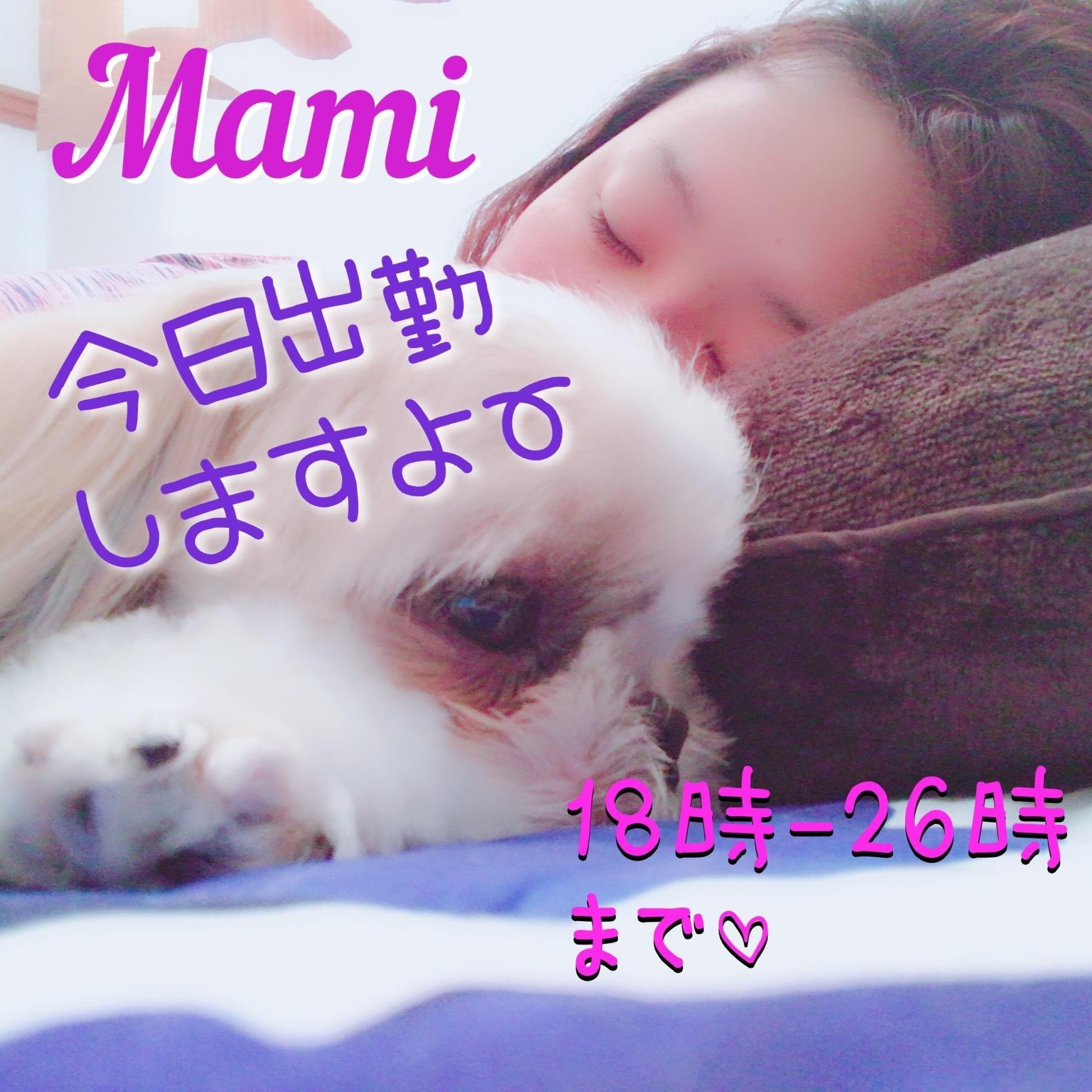 「ぷら日記?今日出勤するよん」11/19(11/19) 15:23   まみの写メ・風俗動画