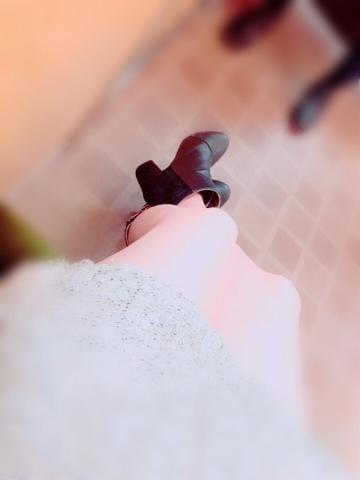「こんばんわん∩^ω^∩」11/19(11/19) 18:37   長濱 ありすの写メ・風俗動画