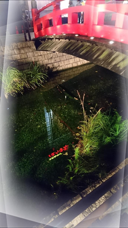 「☆感謝☆」11/24(11/24) 18:18 | 浅水麻弥の写メ・風俗動画