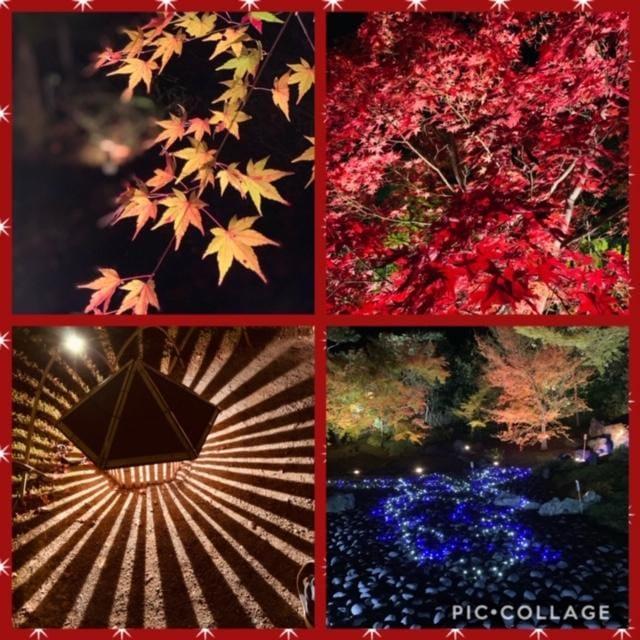 「京都」11/28(11/28) 12:15   さきの写メ・風俗動画