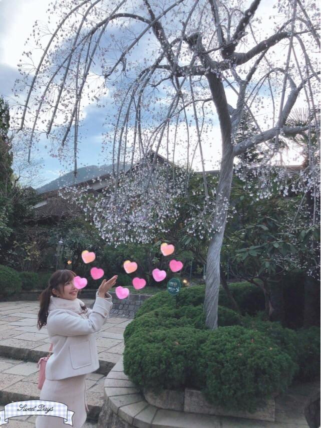 「箱根♡」11/28(11/28) 23:22 | みなみの写メ・風俗動画