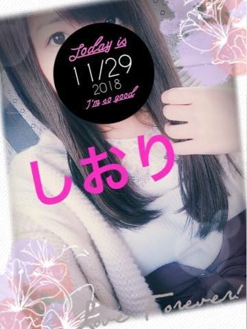 「癒される♪」11/29(11/29) 10:52 | しおりの写メ・風俗動画