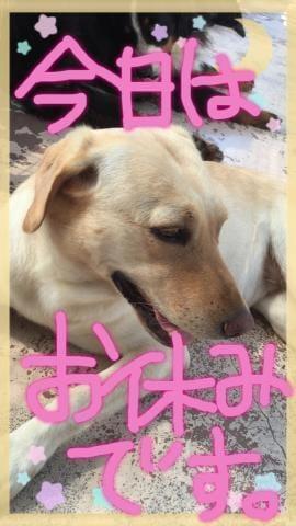 「(人・_・)♡︎」12/05(12/05) 23:54 | かなの写メ・風俗動画